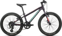 Orbea MX 20 Team  Purple/Pink  click to zoom image